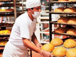 ayudante de panaderia para fabrica de productos panificados bakery assistant for bakery products factory