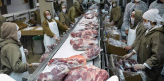 empacadores para inductria de carne packers for meat inductria