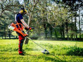 Parquista, Jardinero, Mantenimiento y Limpieza General Landscaper, Gardener, Maintenance and General Cleaning