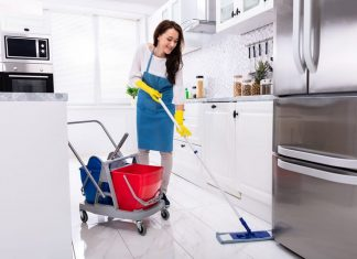 servicio domestico empleada del hogar empleada domestica para casa de familia domestic service domestic employee for family home