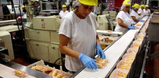 Operarias Para Envasado de Productos Alimenticios Jornada Medio Tiempo Operators For Food Products Packaging Part-time Day