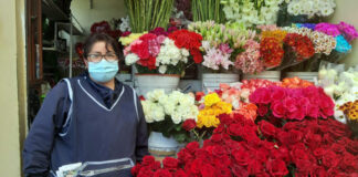 operarios de almacen de flores y vegetales flower and vegetable warehouse operators