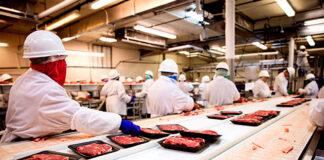 Operarios De Producción y Empaquede Alimentos Food Production and Packaging Operators