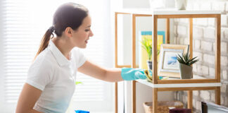 emplada del hogar home employee