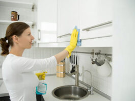 empleada del hjogar cleaning lady