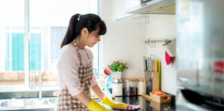 limpieza del hogar cleaning