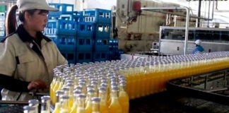 operarias para empaque de jugos en fabrica workers for packaging juices in the factory