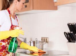 empleada domestica domestic