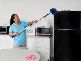 maid housekeeper domestic servant empleada domestica por horas empleada del hogar