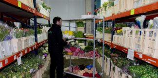 personal para almacen de flores trabajadores de almacen flower warehouse staff warehouse workers atencion al publico