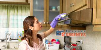 Empleada domestica limpieza de casas empleada del hogar Domestic employee Housekeeping staff