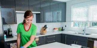 empleada-femenina-de-limpieza-cleaning
