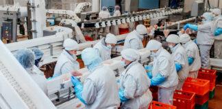 empleados de produccion para planta alimenticia production employees for food plant