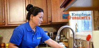 maid domestic empleada domestica por hora empleada del hogar trabajo por hora domestic servant for family home limpieza de casas